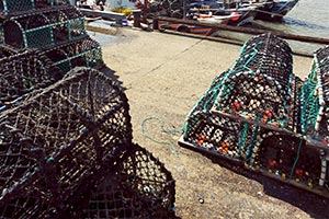 Lobster Pots at the harbour, Bridlington